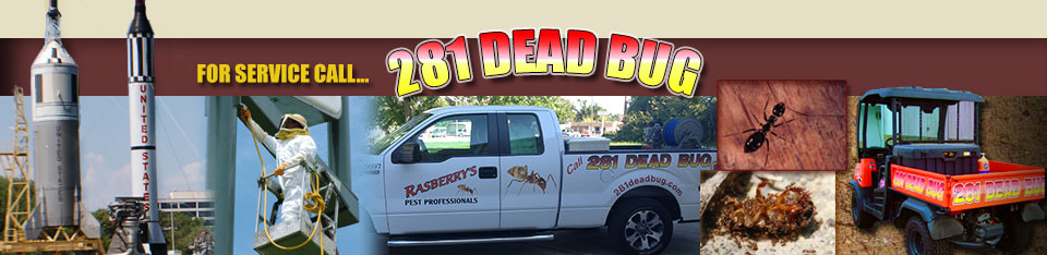 Pest Control Friendswood  Rasberry's Pest Professionals